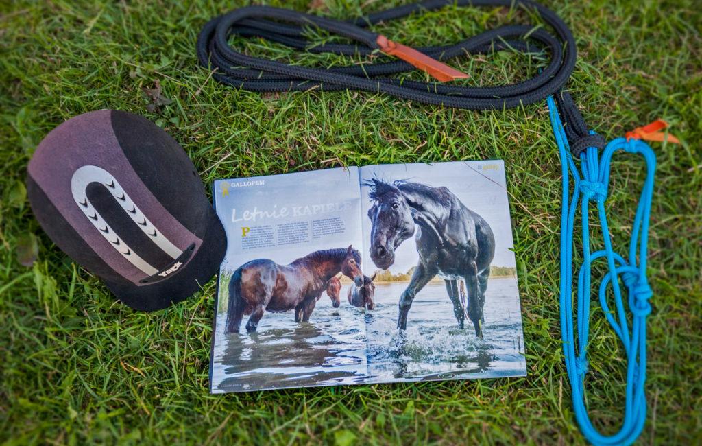 Wakacyjna fotografia koni